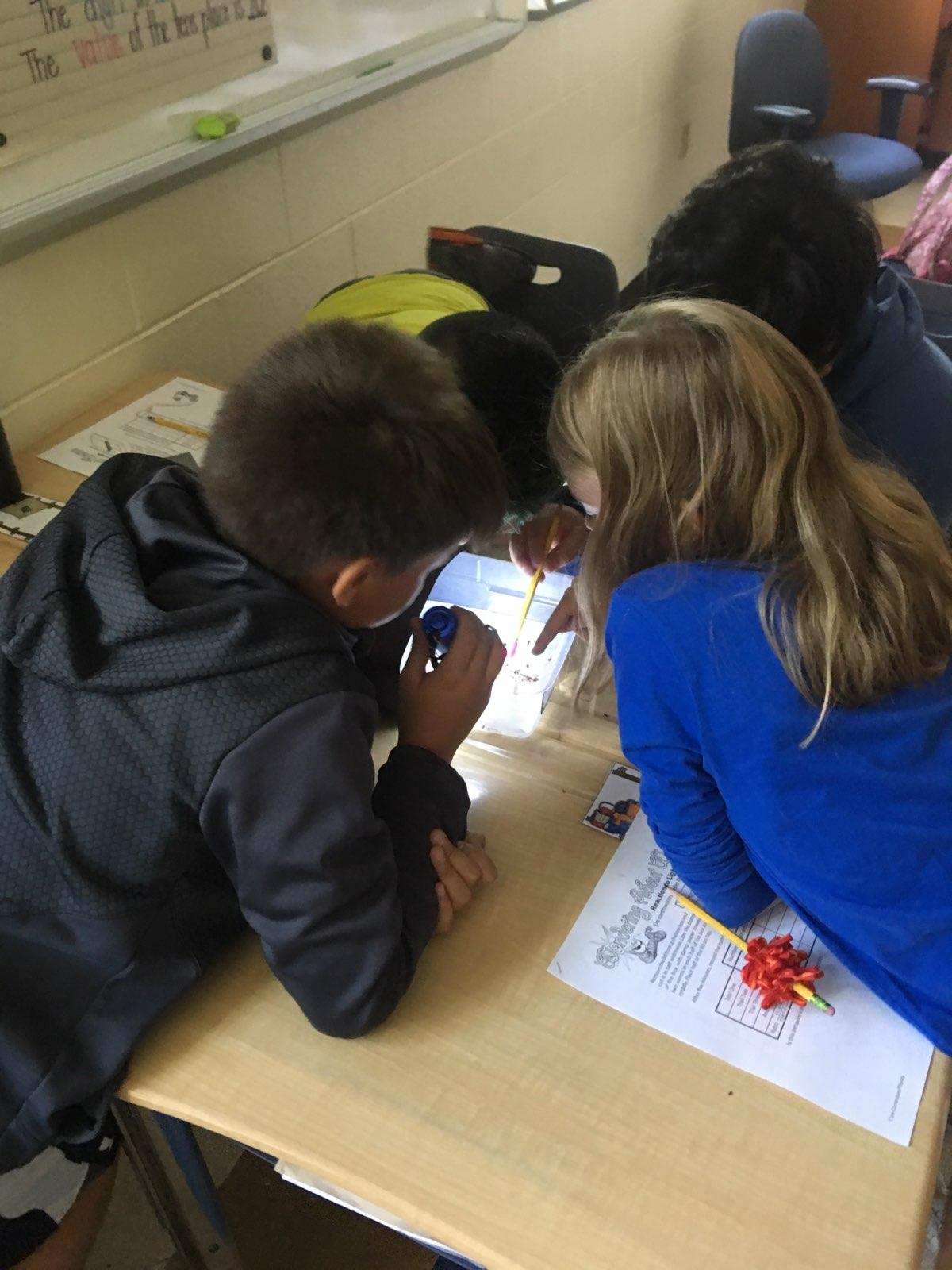students holding flashlight looking at worms